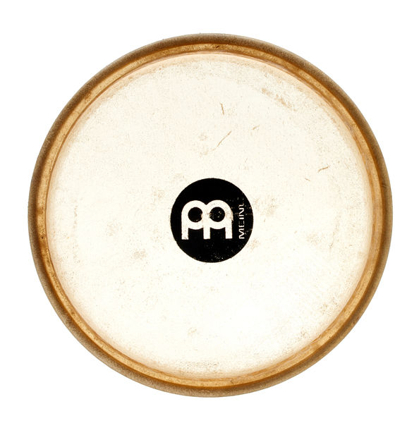 Meinl Head 03