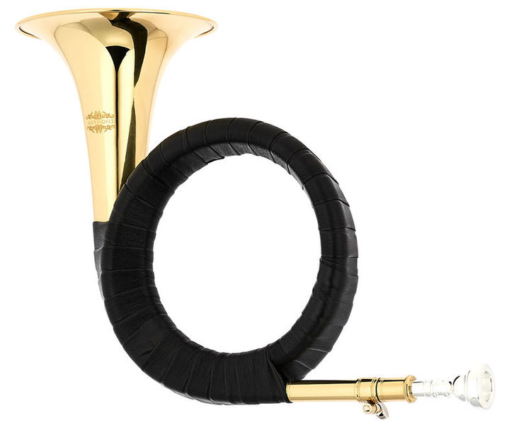 Thomann Bb- Fürst Pless Horn