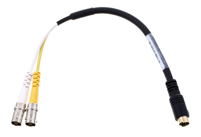 Extron SVHSM 2BNCF Cable 0,2m