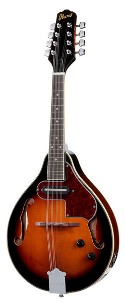 13 Loch C Ton Gitarre Bass Pitch Tuner Tuning Tool Stimmgerät Mit Koffer