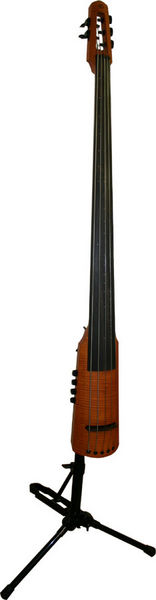 NS Design CR5 Upright Bass Amber