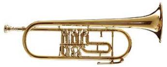 Kühnl & Hoyer 6010 Rotary Trumpet