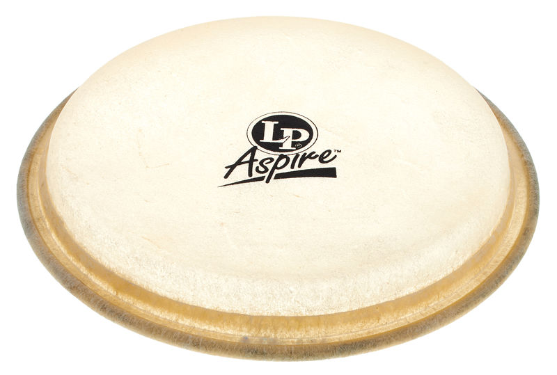 LP A663A Bongo Head Aspire 6 3/4""