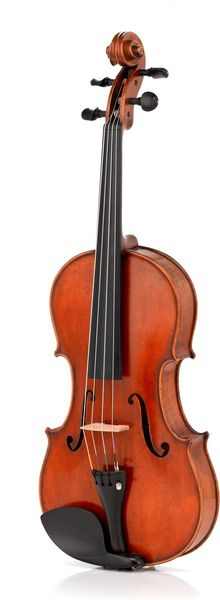 Roth & Junius Largo Viola 15,5""