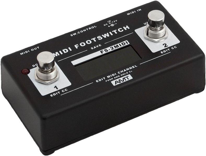AMT FS-2 Midi