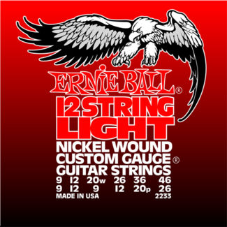 Ernie Ball 12-string Light Nickel Wound