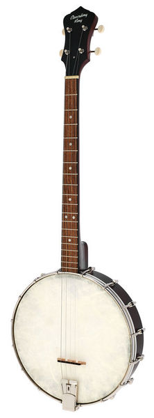 Recording King RKT-05 Dirty 30s Tenor Banjo