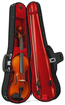 Karl Höfner Allegretto 1/2 Violin Outfit