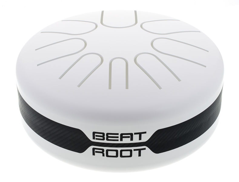 Beat Root C Major white acoustic