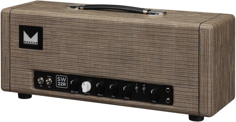 Morgan Amplification SW22R Head Driftwood
