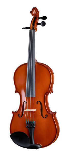 Gewa Allegro Flaxwood Violin 4/4
