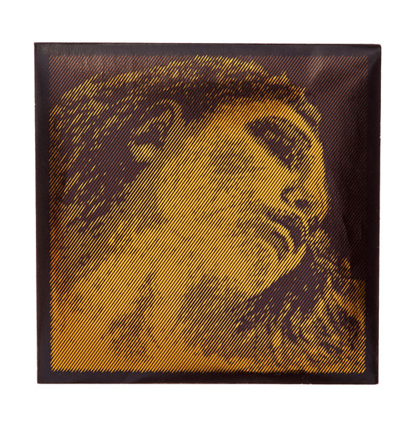 Pirastro Evah Pirazzi Gold E Violin LP