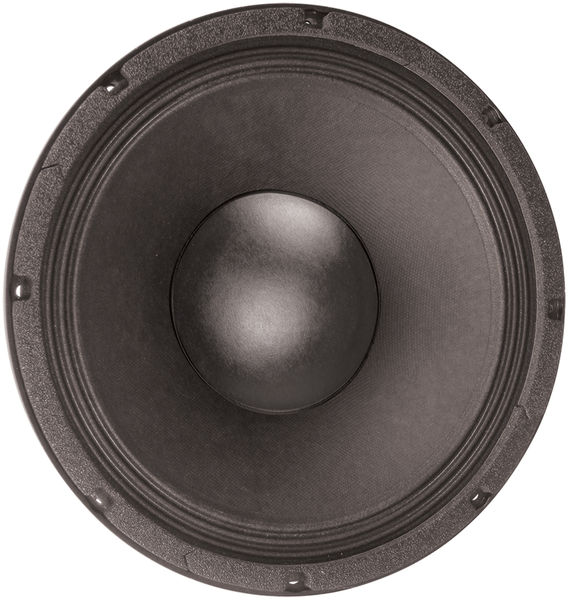 """Eminence Double-T 12"""" Speaker"""