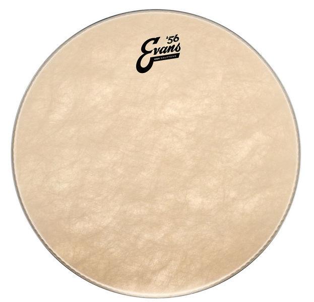 """Evans 16"""" EQ4 Calftone Bass / Tom"""