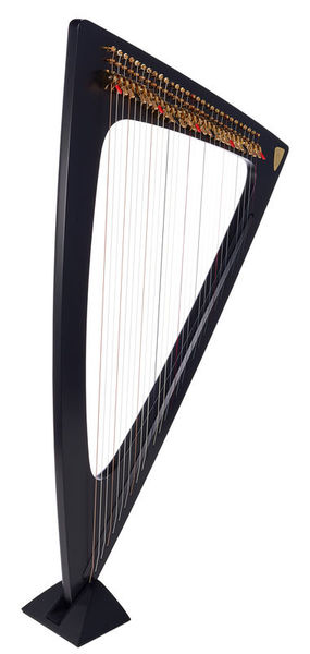 Salvi Delta Electric Harp