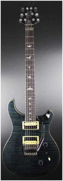 PRS SE Floyd Custom 24 GB Ebony