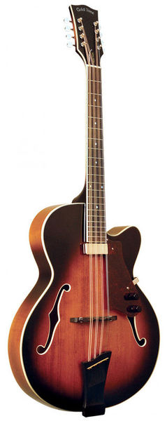 Mandocello w/Pickup and Case Gold Tone