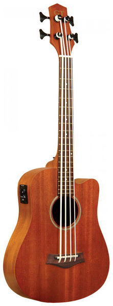 Gold Tone Micro Bass 23 w/Bag