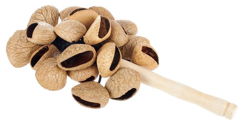 Terre Stickshaker Pangi Seeds