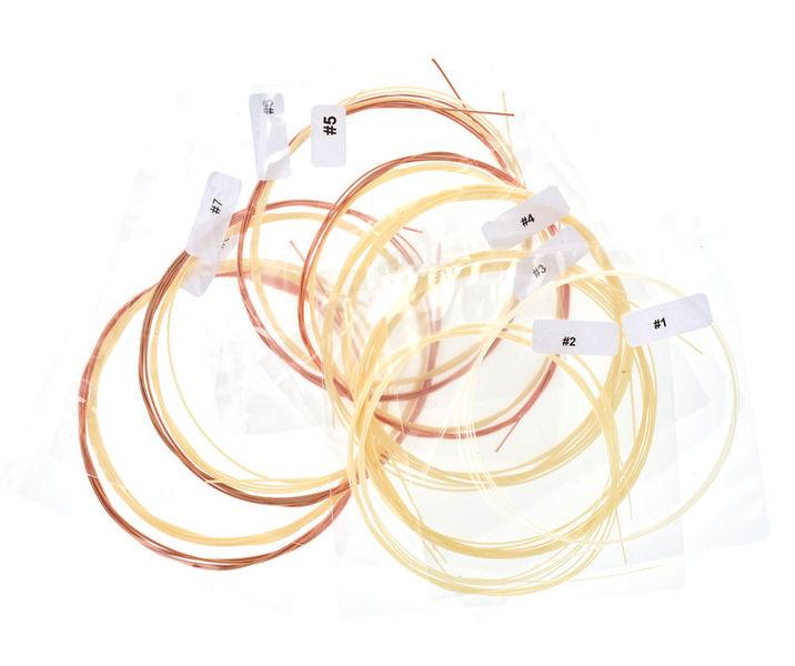 Aquila Renaissance Lute Strings 8C