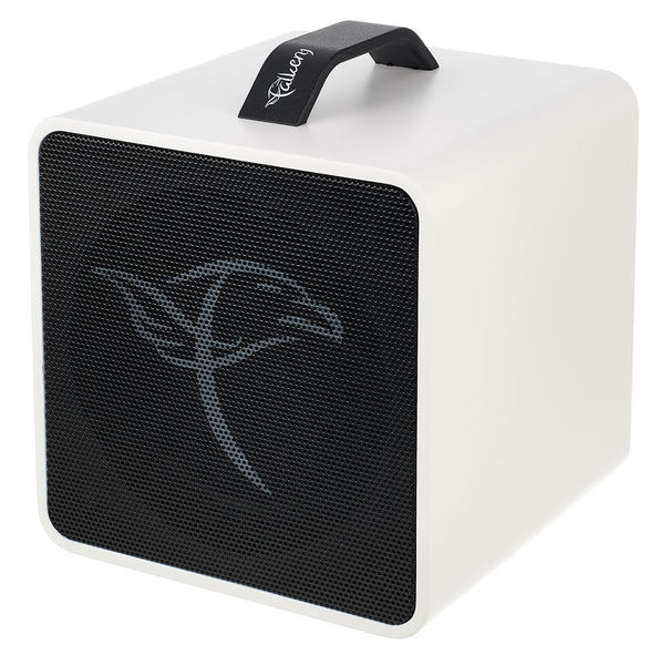 Falken 1 Traveller Akustik-Amp White