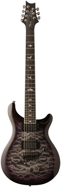 SE Mark Holcomb SVN HB PRS
