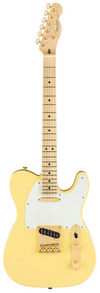 Fender AM Pro Tele LTD MN VWH