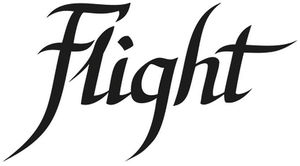Flight company logo