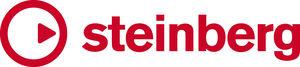 Logo-ul companiei Steinberg